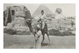 Man in Fez on Camel, Pyramid and Sphinx Posters