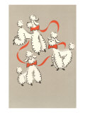 Three Poodles Caricature Posters