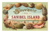 Souvenir from Sanibel Island Posters