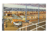 Citrus Packing Plant, Florida Posters