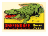 Gator from Okefenokee Swamp Park Poster