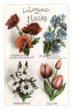 French Language of Flowers Poster