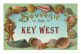 Souvenir from Key West, Florida Photo