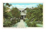 Ford Home, Ft. Myers, Florida Posters