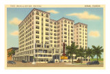 McAllister Hotel, Miami, Florida Posters