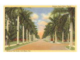 First Street, Ft. Myers, Florida Print