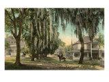 Lime Street, Lakeland, Florida Print
