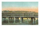 Coconut Dock, Jacksonville, Florida Print