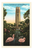 Flamingos, Singing Tower, Lake Wales, Florida Posters