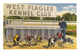 Greyhound Track, Flagler, Florida Prints