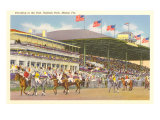 Hialeah Race Track, Miami, Florida Posters