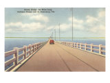 Gandy Bridge, St. Petersburg, Florida Posters