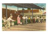Jeu de galets, St. Petersburg, Floride Posters