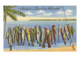 Fishin's Good in Florida Print
