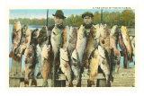 Fish Catch, Florida Posters