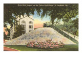 Indian Shell Mound, St. Petersburg, Florida Posters