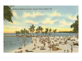 Matheson Hammock Beach, Miami, Florida Poster