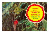 Greeting from Tropical Florida, Banana in Bloom Posters