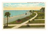 Bay Shore Drive, Tampa, Florida Posters