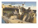 Monkey Island, Circus Quarters, Sarasota, Florida Posters