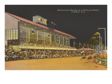 Greyhound Racing, Miami, Florida Posters