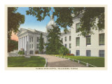 State Capitol, Tallahassee, Florida Posters