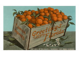 Orange Crate, Florida Poster