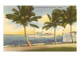 Yachts, Biscayne Bay, Miami, Florida Print