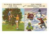 Oranges Versus Snowballs Posters