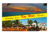 Greetings from Key West, Florida Print