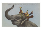 Circus Elephant with Clown, Sarasota, Florida Poster