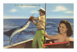 Catching a Sailfish, Ft. Lauderdale, Florida Posters
