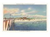 Beach, Casino, Pensacola, Florida Posters