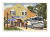 Aquarium, Key West, Florida Posters