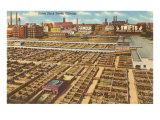 Union Stockyards, Chicago, Illinois Posters