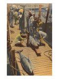 Fish on Dock, Florida Print
