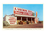 Fruit Stand, Ft. Pierce, Florida Print