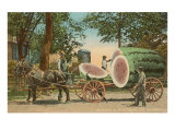Giant Watermelon on Cart, Florida Print