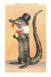 Alligator in Top Hat Prints