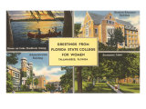 Greetings from Florida State, Tallahassee, Florida Print