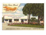Orange Shop, Clearwater, Florida Posters
