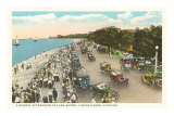 Lake Shore, Lincoln Park, Chicago, Illinois Poster