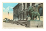 Art Institute, Lion Statue, Chicago, Illinois Photo
