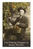 Old Guy with Oranges, Florida Posters