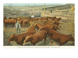 Stockyards, Chicago, Illinois Posters