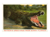 Seasons Greetings from Sunny Florida, Alligator Posters