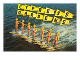Water Skiers, Cypress Gardens, Florida Kunst