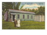 The Edisons and Winter Home, Ft. Myers, Florida Posters