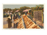 Fruit Stand, Florida Poster