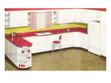 Kitchen with Red Formica Counters Poster